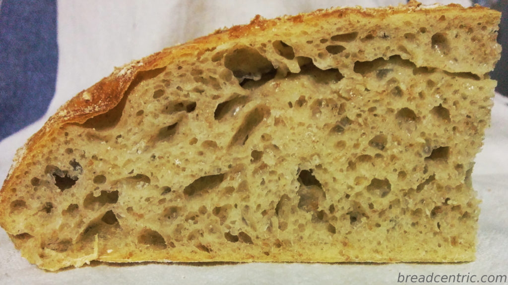 The crumb (torn dough seen in the upper section)