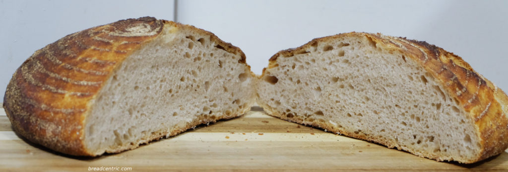 Wheat sourdough bread - the crumb