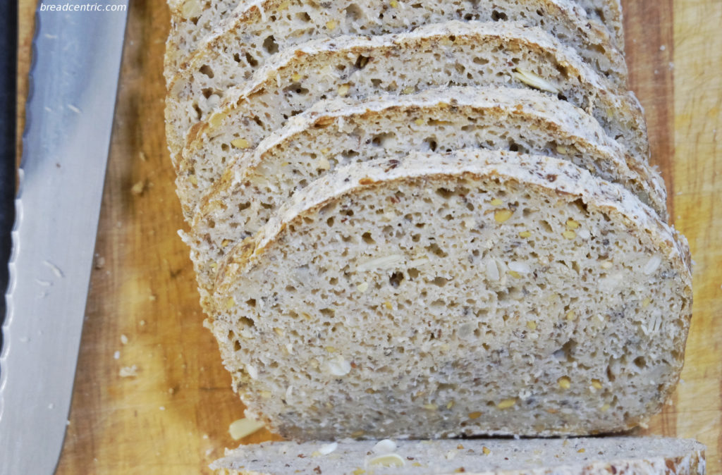 Gluten-free sourdough - the crumb