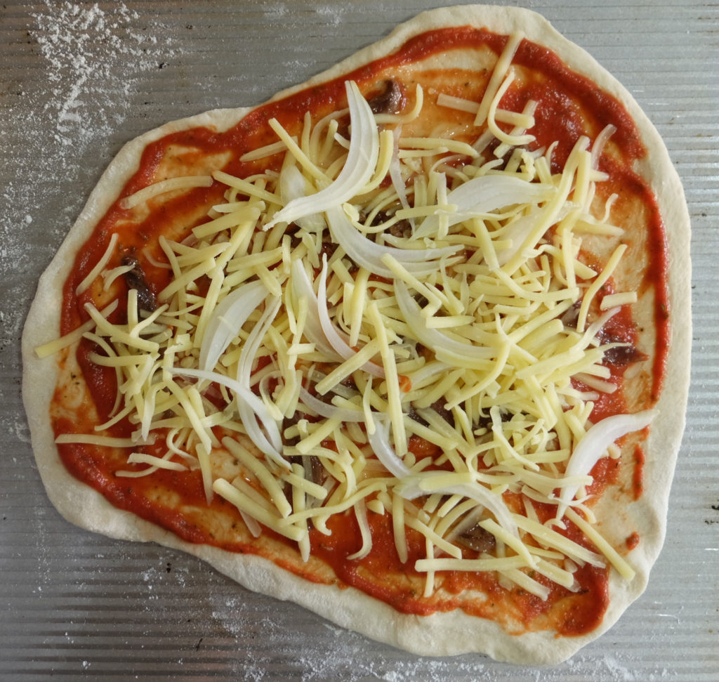 Pizza with tomato sauce, anchovies, cheese and onion